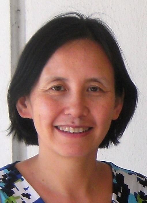 Professor Li Han